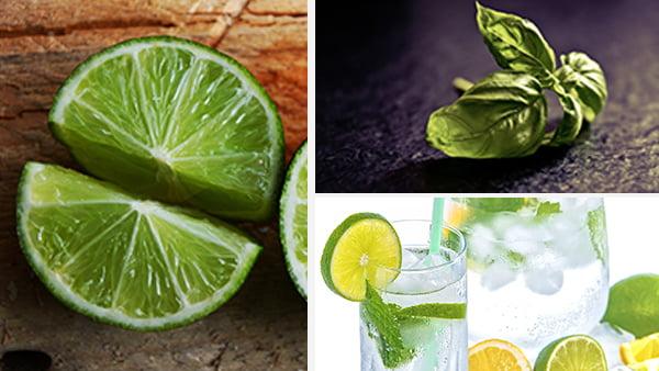 limetten zitronen und kräuter als farbbeispiel für grün kombinationen