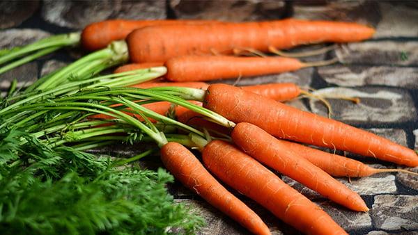 karotten als beispiel für natürliches ostereierfärben in orange