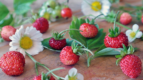 Erdbeeren mit gänseblümchen auf einem holzbrett