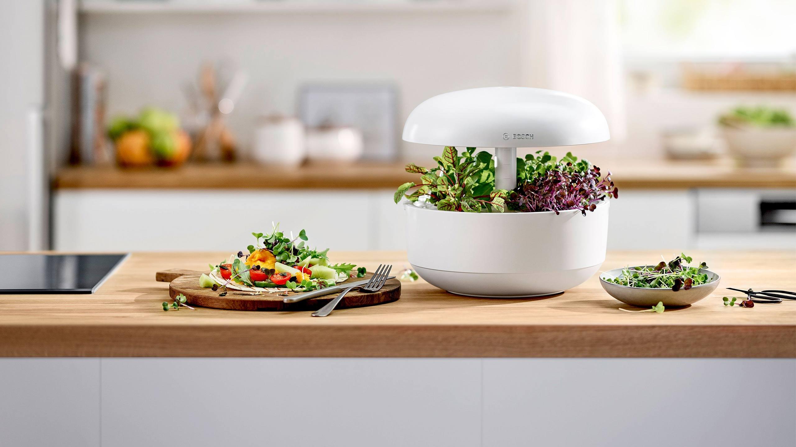 bosch indoor gardening mit dem smartgrow smarter kräutergarten für zuhause