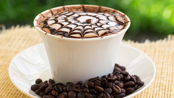 spinnen kaffee