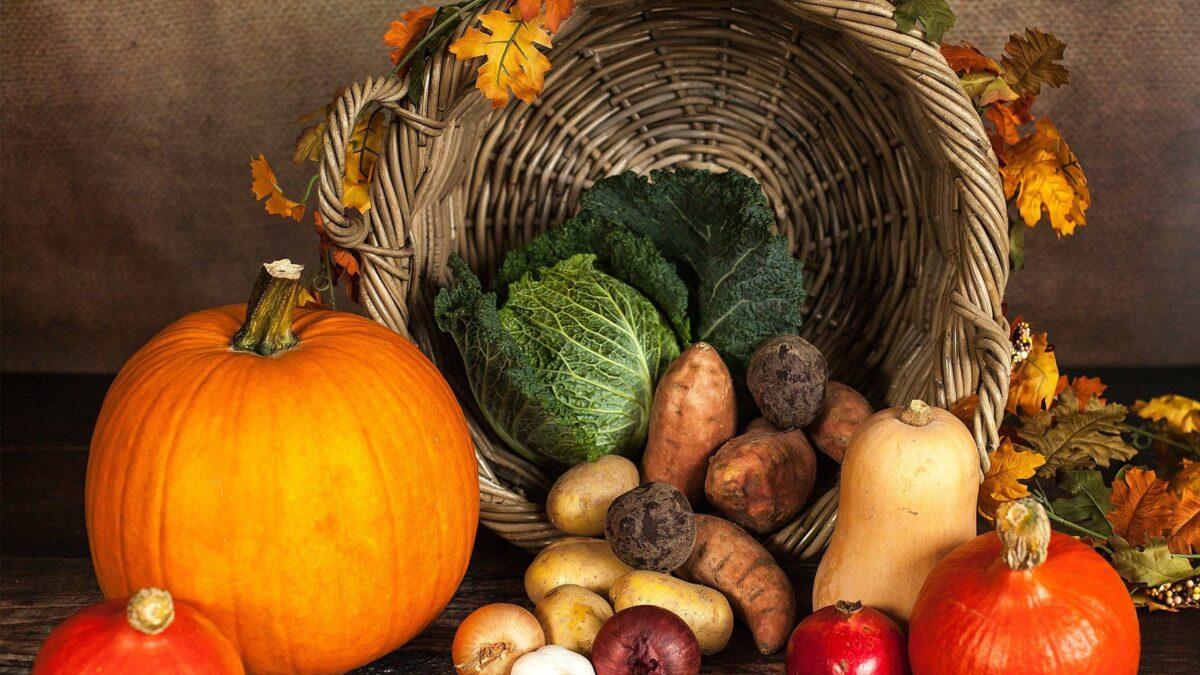 saisonale lebensmittel herbst saisonkalender header im küchen staude magazin