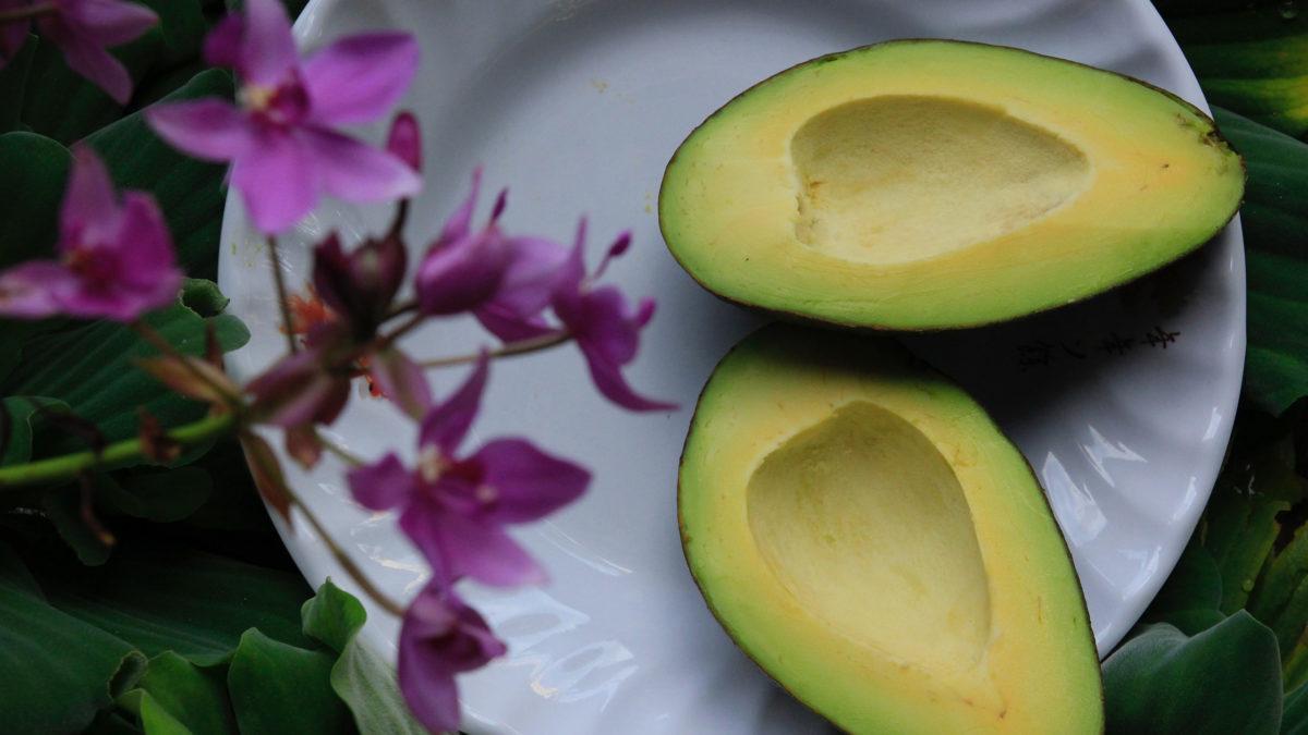 avocado herkunft rezepte kalorien